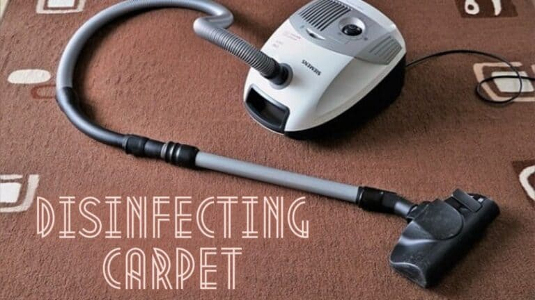 how to disinfect carpet naturally